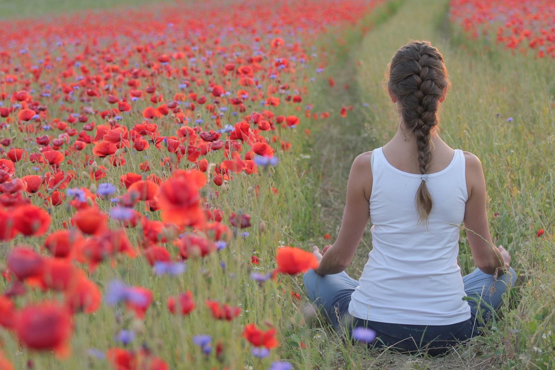 Thrive Yoga and Welness