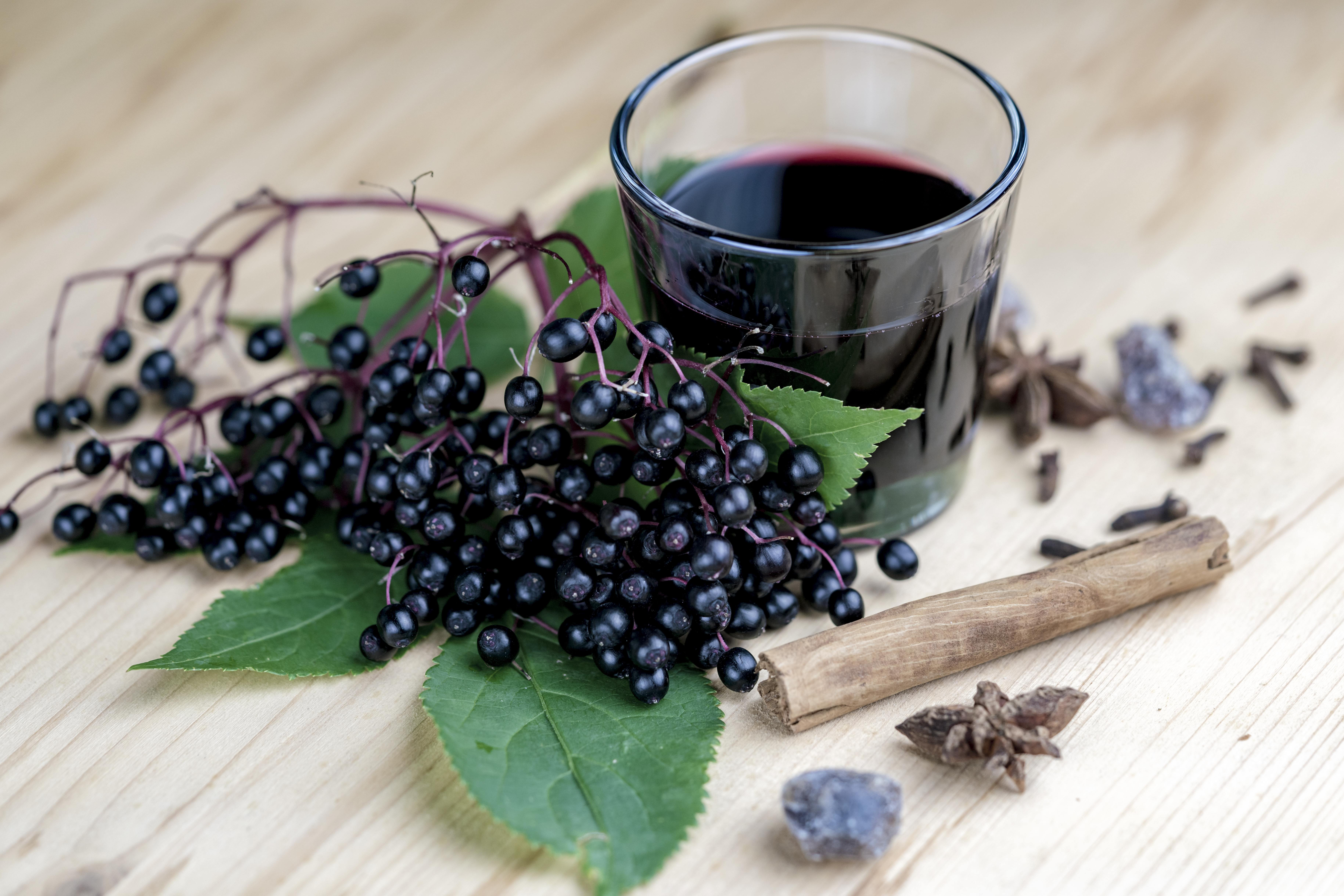 Thrive Yoga Elderberry